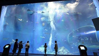 アクアワールド大洗水族館1