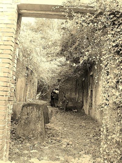 廃墟を巡る5