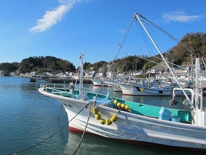 漁港の朝3