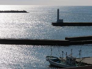 漁港の朝2