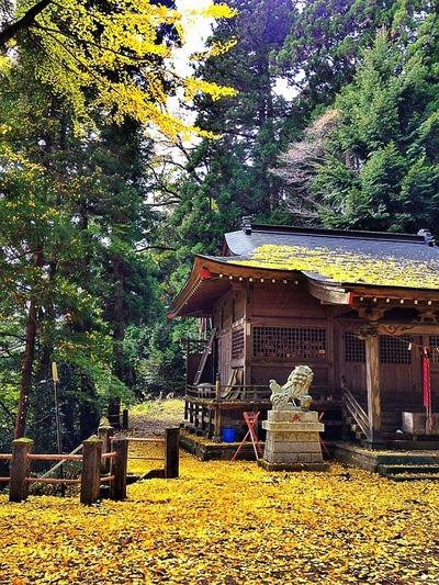 田人・小土神社3