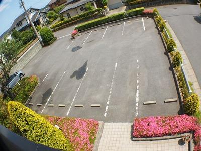 医院二階から駐車場を望む