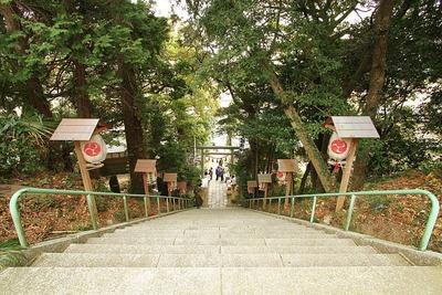 大國魂神社の階段