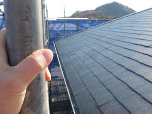当院の屋根2