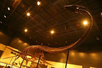 会津の県立博物館4
