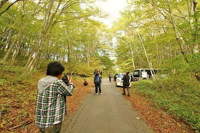 田人の原生林1