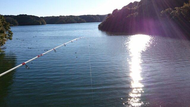 小野湖の未確認生物
