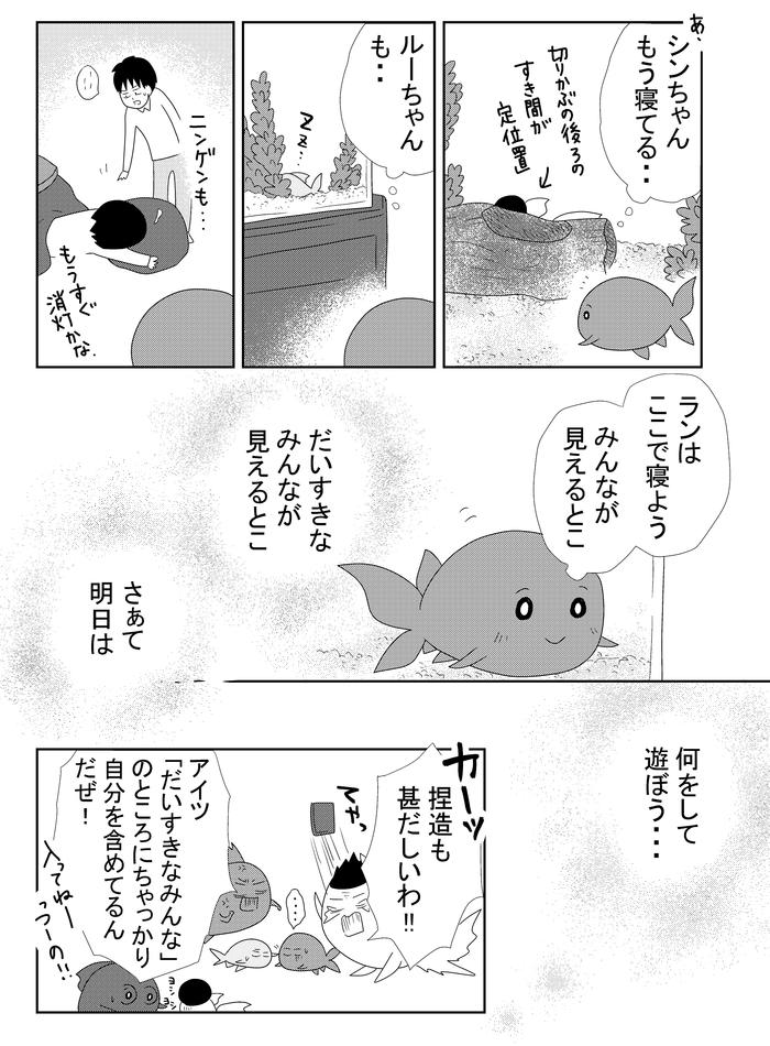 B金魚522.w