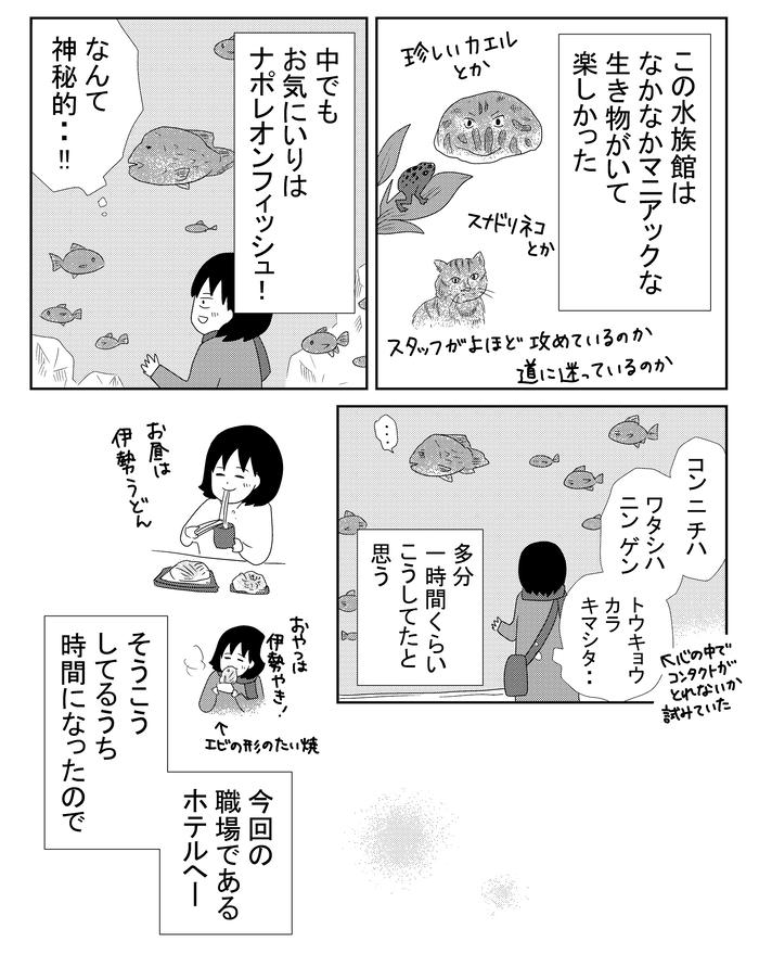 B金魚784.w