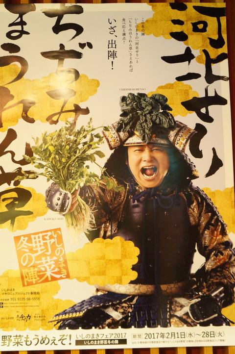 石巻の野菜 (1)