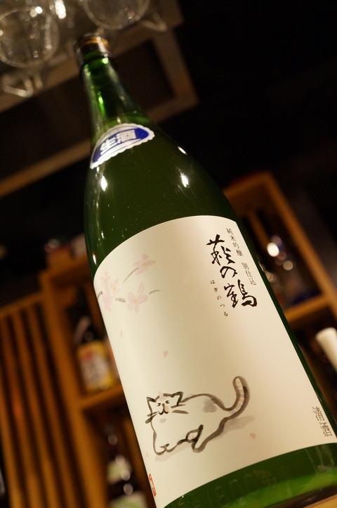 萩の鶴 桜ネコ (2)