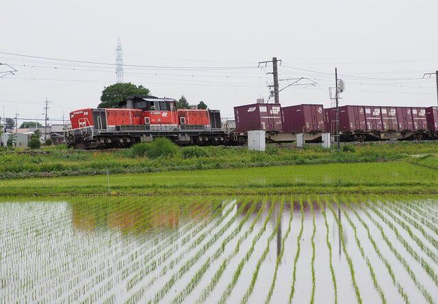 8 DD51-1801 コンテナ列車 白鳥信号所にて その4