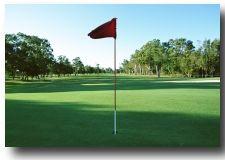 デザイン79ゴルフ