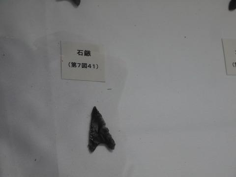 P1050531
