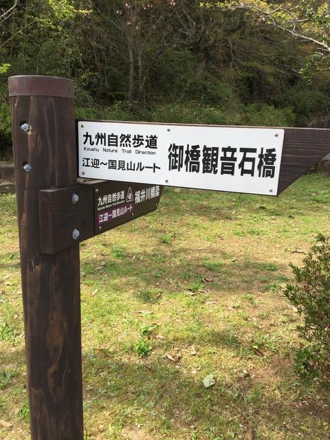 写真 2016-04-10 14 38 50