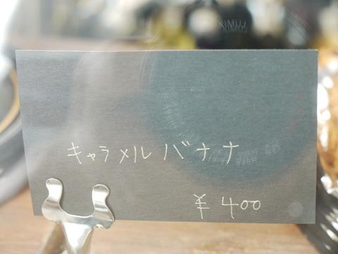 P1130048