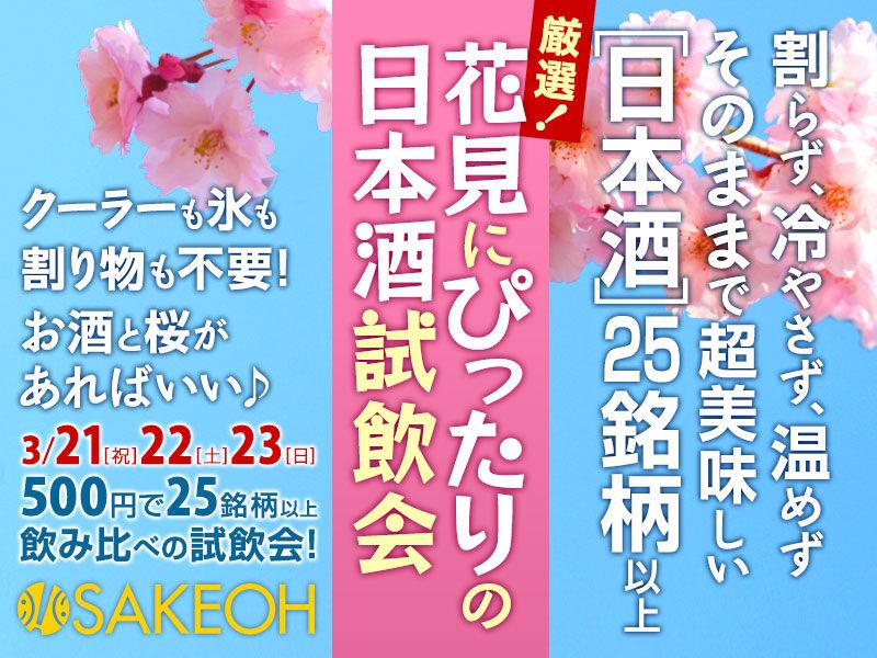 201403-hanami-blog