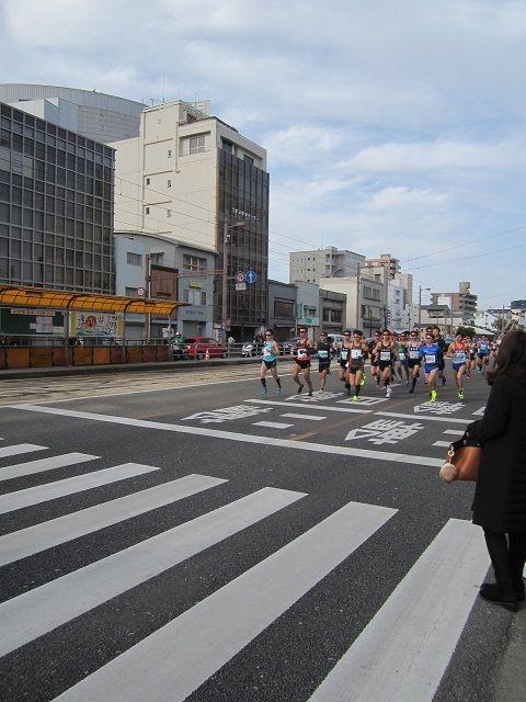 第6回高知龍馬マラソンが晴天の下、開催されました。