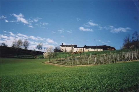 イタリア畑