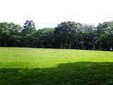 ◆公園にてひと休み。◆