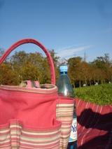 picnic_stcloud_1