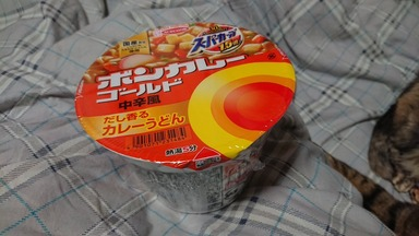 ボンカレーカップ麺