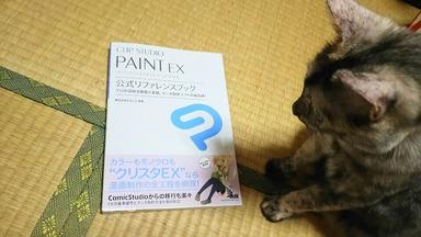 PAINT EX