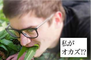 sousyoku001