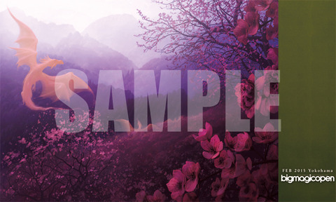 bmopm-sample