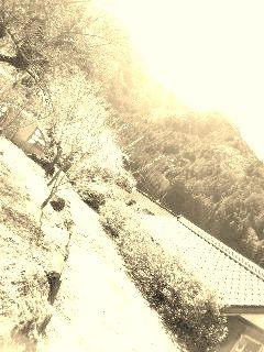 190309_1147~01 - コピー (2) - コピー