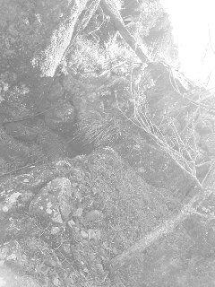 190309_1125~02 - コピー