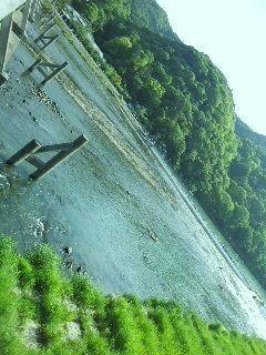 桂川2 - コピー