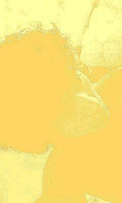 セルフポートレート_7797276_黄