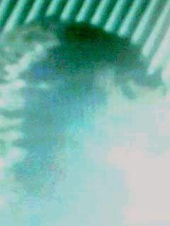 セルフポートレート_4948009_090315_0105~001003001