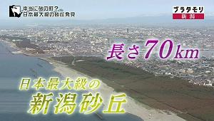 nigata4