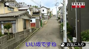 nigata5