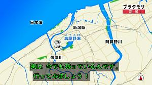 nigata25