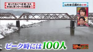 maizo10