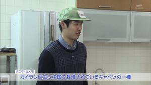 yasai14