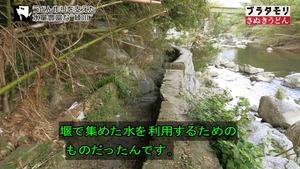 sanuki62