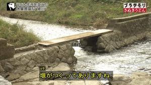 sanuki61