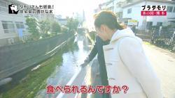 kumamizu11