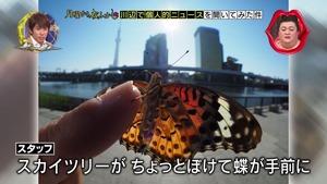 kawabe4