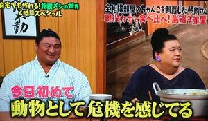 sumo14