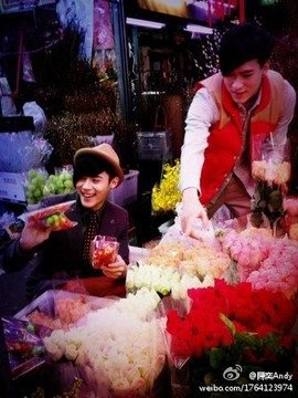 花市場に行ってみたい