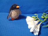 正解はフリージア、僕はペンギン