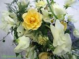 花に囲まれて