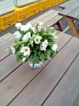 ミントの花束