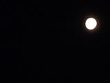 どっぷり満月