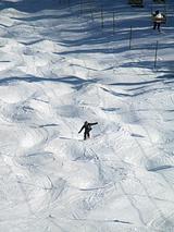 スキーで、こぶ。